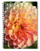 Dahlia Hue Spiral Notebook