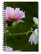Dahlia Incognito Spiral Notebook