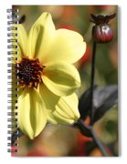Dahlia Knockout Spiral Notebook