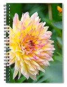 Dahlia Magic Spiral Notebook
