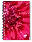 Dahlia Named Mingus Erik Spiral Notebook
