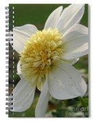 Dahlia Named Platinum Blonde Spiral Notebook