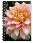 Dahlia Named Seattle Spiral Notebook