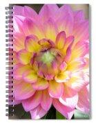 Dahlia Speak To Me In Pink Spiral Notebook