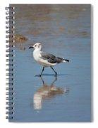 Daily Walk Spiral Notebook