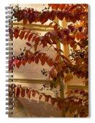 Dainty Branches - Warm Autumn Colors - Washington D C Facades Spiral Notebook
