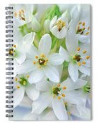 Dainty Spring Blossoms Spiral Notebook