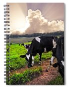 Dairy Cows At Sunset Spiral Notebook