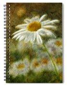 Daisies ... Again - P11at01 Spiral Notebook