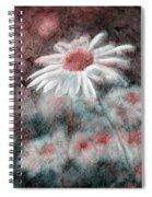 Daisies ... Again - P11ac2t1 Spiral Notebook