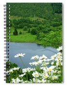 White Daisies At Queens View Spiral Notebook
