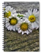 Daisies In Wreath Spiral Notebook