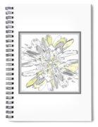 Daisies Three Spiral Notebook