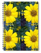 Daisy 8 Spiral Notebook