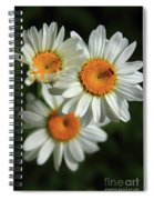 Daisy And Friend Spiral Notebook