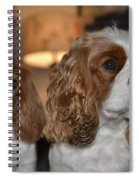 Daisy And Rivers Spiral Notebook