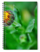Daisy Bud Ready To Bloom Spiral Notebook