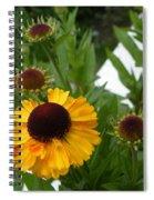 Daisy Chain Spiral Notebook