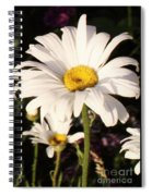 Daisy Close Up Spiral Notebook