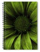 Daisy Daisy Avacado Spiral Notebook
