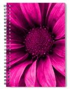 Daisy Daisy Neon Pink Spiral Notebook