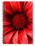 Daisy Daisy Neon Red Spiral Notebook