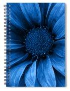 Daisy Daisy Pure Blue Spiral Notebook