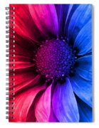 Daisy Daisy Red To Blue Spiral Notebook