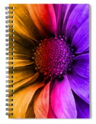 Daisy Daisy Yellow To Purple Spiral Notebook