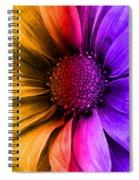 Daisy Daisy Yellow To Purple Spiral Notebook
