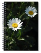 Daisy Days Spiral Notebook