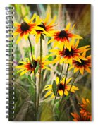 Daisy Do Spiral Notebook