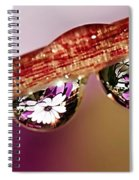 Daisy Droplets Spiral Notebook