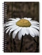 Daisy Spiral Notebook