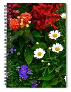 Daisy Field Spiral Notebook