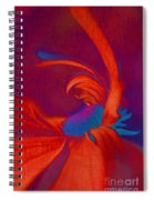 Daisy Fun - A03ct02 Spiral Notebook
