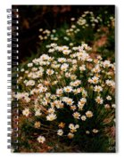 Daisy - Give Me Your Answer Do Spiral Notebook