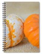 Daisy Gourd And Pumpkin Spiral Notebook
