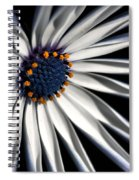 Daisy Heart Spiral Notebook