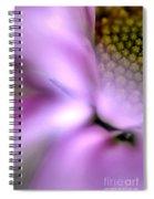 Daisy Mirage Spiral Notebook