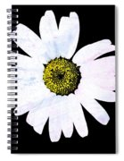 Daisy On Black Spiral Notebook