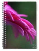 Daisy Petals Spiral Notebook