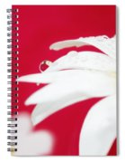 Daisy Reflecting On Red V2 Spiral Notebook