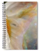 Daisy With Hubble Cosmos Spiral Notebook