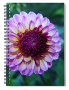 Dalhias At The Gorge White House In Hood River Oregon Spiral Notebook