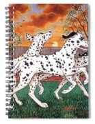 Dalmatians Three Spiral Notebook