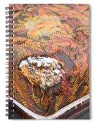 Damaged Upholstery Spiral Notebook