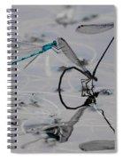 Damselfly Circus Spiral Notebook