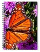 Danaus Plexippus Spiral Notebook
