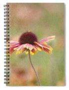 Dance Of Joy Spiral Notebook
